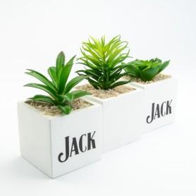 Plantjes groot (3 ass.)