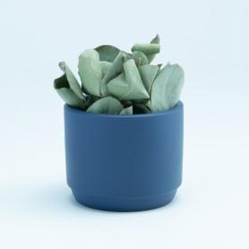 Bloempotje marineblauw